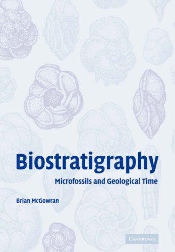 Biostratigraphy