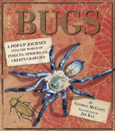 Bugs: Pop-Up Book