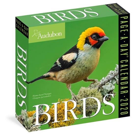 Birds Page-A-Day Calendar 2020