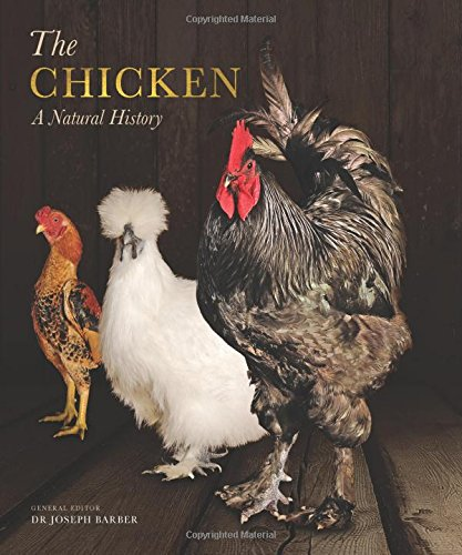 Chicken: A Natural History