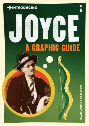 Introducing Joyce: A Graphic Guide