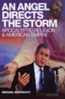 Angel Directs Storm: Apocalyptic Religion and American Empire Hb