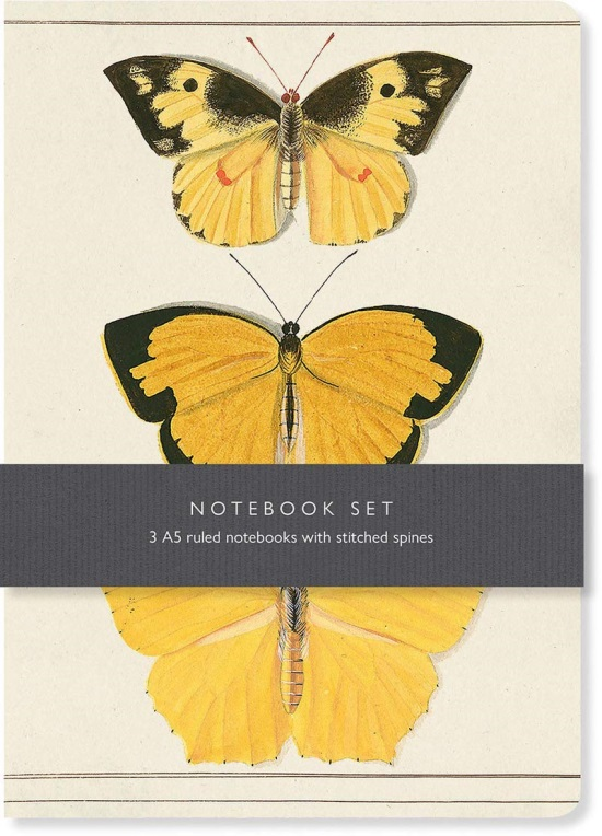Butterfly Notebook Set: 3 A5 lined notebooks with stitched spines