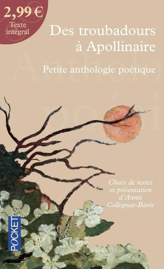 Troubadours a Apollinaire: Anthologie de poesies francaises