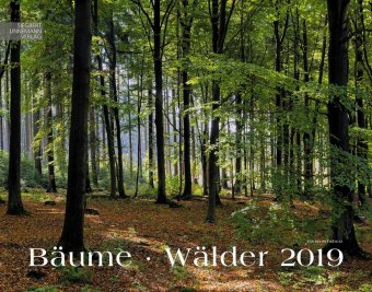 Baeume - Waelder 2019