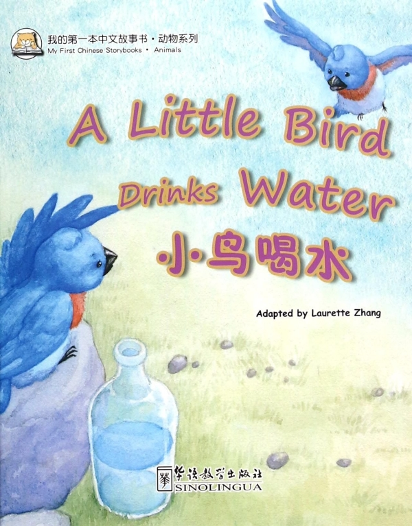 A little bird drinks warter