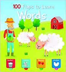 100 Flaps to Learn: Words