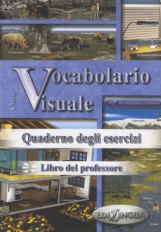 Vocabolario Visuale Libro del professore